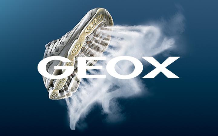 GEOX NET