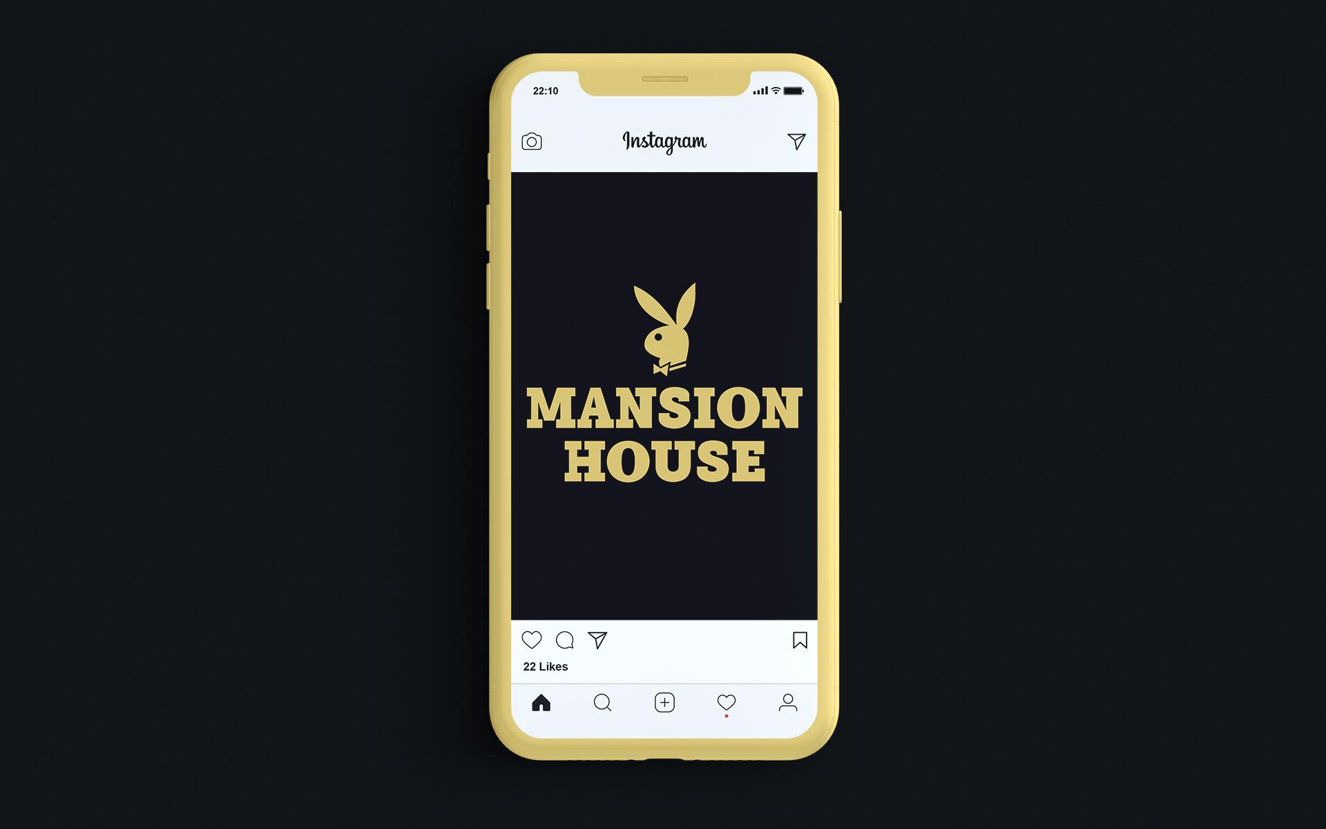 tube_brands__0004_Manion house